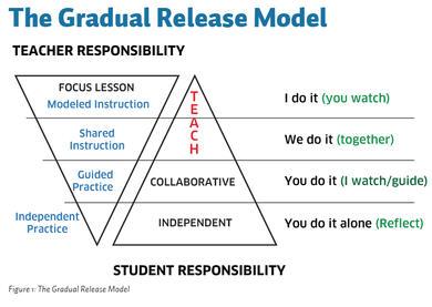 Gradual_Release_Model.jpg